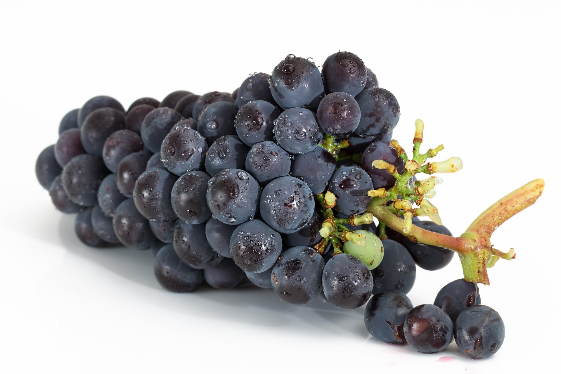 grapes-2032838 1920 jpg