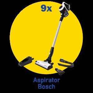Bosch1 png